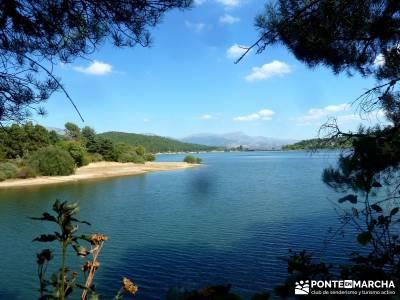 Jarosa - Agua y Bosque Plateado; montañismo madrid;senderismo guadarrama;viajes fines de semana